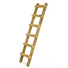 wooden jungle gym ladder