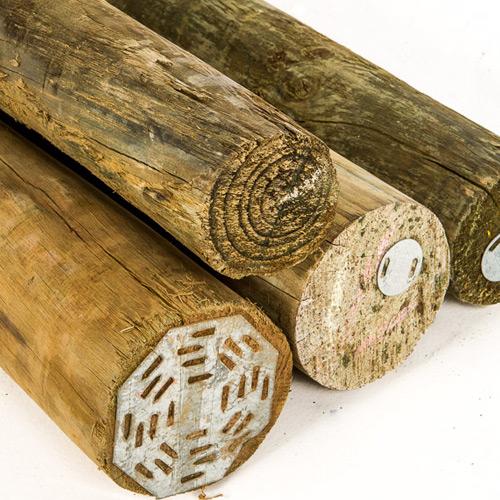 Treated Poles