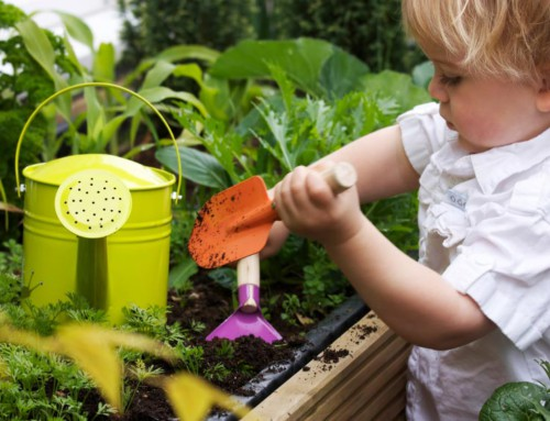 4 Garden Projects you and your kids can tackle together