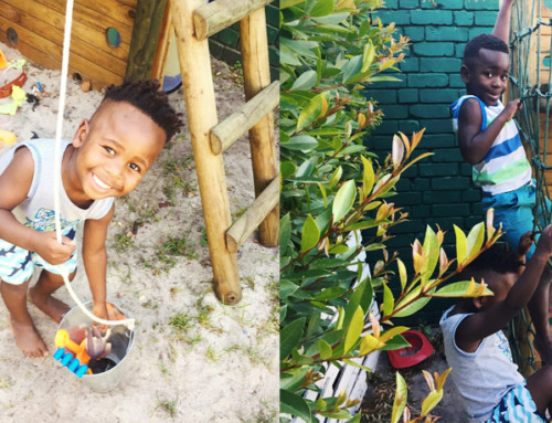 How a jungle gym added value to the lives of a big family with a small garden