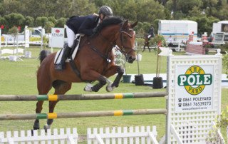 Horse jumping over Tapered Poles